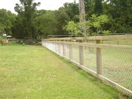 1000 ideas about my fence inspiration on pinterest fencing snake