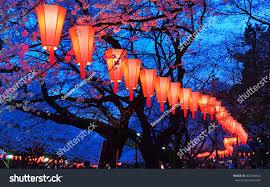 Beautiful Lighting Beautiful Light Colours Japanese Lanterns Cherry Stock Photo