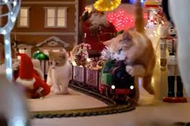 Simons Cat Christmas Tree by Crazy Cats Wreck A Christmas Display In This Entertaining
