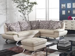 stunning couches for small living rooms with elegant awesome