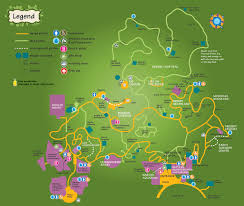 Phoenix Zoo Map by What To See And Do