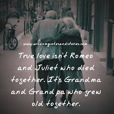 True love is not Romeo and Juliet jpg     romeo and juliet love theme essay
