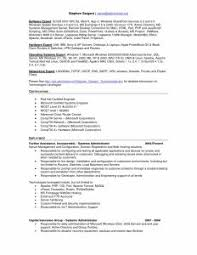 Professional Resume Format Australia    Reasons This Is An Excellent Resume  Business Insider lorexddns