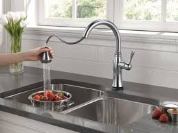 Kitchen Faucets With Pull Out Spray by A Moen Pull Out Chrome Kitchen Faucet The Best In Your Kitchen