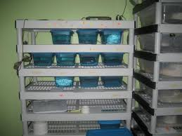 Home Depot Plastic Shelving by Diy 9 Tub Breeder Rack Lightweight Plastic Shelving Unit Page 2