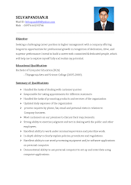 Curriculum Vitae Format With Objective In Seeking A Challengin       career summary sample