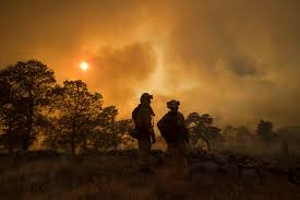 Willow Wildfire California by San Diego Firefighters Help Battle State U0027s Largest Wildfire Kpbs