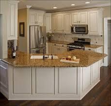 Best 2d Home Design Software Kitchen Best Kitchen Design Software Lowes Kitchen Gallery Lowes