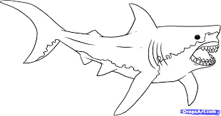draw a cartoon shark coloring in your shark with shark drawing