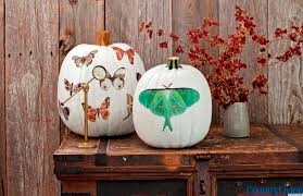 halloween yard decorations diy halloween decorations moth decal pumpkins from country living