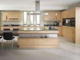 modern kitchen cabinets nyc home design