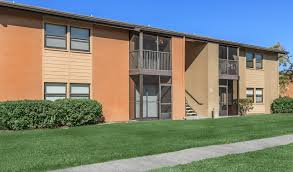 apartments for rent in st petersburg fl