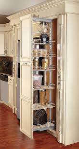 Kitchen Cabinets With Pull Out Shelves by 12 Best Kitchen Island Images On Pinterest Live Projects And