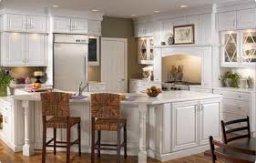 Kitchen Cabinet Doors Replacement Cabinet Prodigious Cabinet Door Fronts Home Depot Horrifying
