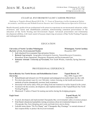Professional Profile On Resume Eagle Scout On Resume Free Resume Example And Writing Download