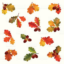 Maple Tree Symbolism by Autumn Icon Set Fall Symbols Vector Collection Stock Vector Art