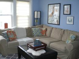 Bedroom Ideas With Blue And Brown Living Room Brown Couch With Blue Wonderful Color Schemes For