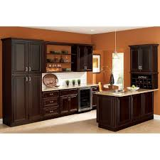 Home Depot Kitchen Cabinet Reviews by Hampton Bay 18x84x24 In Cambria Pantry Cabinet In Java Kp1884 Cjm