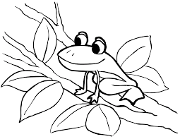 tadpole coloring page free printable frog coloring pages for kids