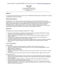 Sample Resume For Senior Manager by Sweet Looking It Resume Sample 5 Information Technology Resume