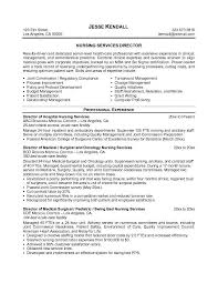 free resume templates  instant download professional resume cv     Pinterest