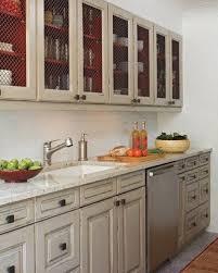 Cabinet Styles For Kitchen Best 25 Chicken Wire Cabinets Ideas On Pinterest Farmhouse