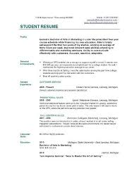 Customer Services Resume Sample by Cv Examples For College Students Sample Customer Service Resume