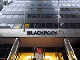 BlackRock Offshore Fund Nets Over $300M