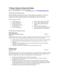 Resume Writing Services Boston Ma  resume writing services     cfo resume