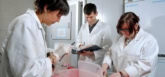 Preparing a research proposal   Postgraduate Study   University of
