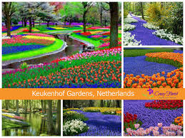 a journey across the 5 most beautiful gardens in the world