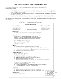 Write Objective For Resume With Work Experience As Crew Leader  Sample Resume