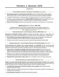 Financial Planner Resume Sample by Cfo Resume Samples Free Resumes Tips