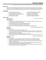examples of resumes     First Time Job Resume Examples Budget Template  Letter Throughout    Captivating     Brefash