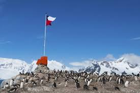 Antarctica Facts   Uncover the Secrets of This Icy Land Buzzle Chile Flag in Antarctica
