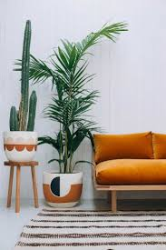 best 25 interior plants ideas only on pinterest house plants
