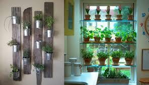herb garden kitchen window how to keep the kitchen herb garden