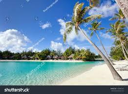 beautiful beach on bora bora island stock photo 118383343