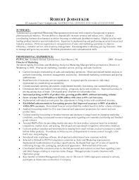 Executive Marketing Director Resume Sample   SinglePageResume com     marketing director resume summary and professional experience