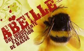 Les abeilles, témoins du bon état de notre environnement, disparaissent massivement Images?q=tbn:ANd9GcTzu8QHTmFbg64zi4N6o105bHtla7yPdvqBpnm6T55BILqgQ2sI3w