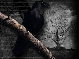raven-bird-night-moon.jpg&t=1