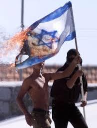 Dschihad - Angriff auf deutsches Baby in NRW Palaestinenser_israel-fahne
