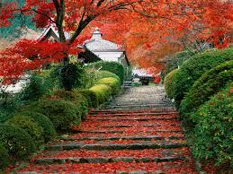 Garden Staircase, Kyoto, Japan