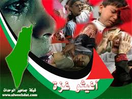 رسالة فلسطيني الى كافة المسلمين...نحن..ماذا gaza.jpg&t=1