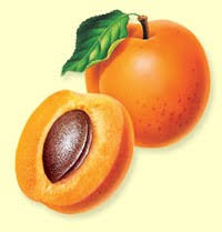 http://t2.gstatic.com/images?q=tbn:Np3q8nfMatDAcM:http://blog.masdelarbre.com/public/Produits%20Frais/magnifique_abricot.jpg