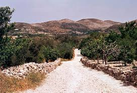 בית ישראל * Haus ISRAEL Samaria_path_mountains_1981-t