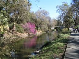 File:Arboretum, UC Davis.jpg