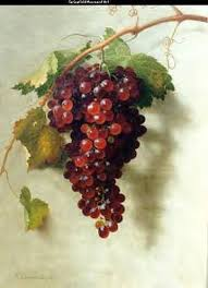 external image red%2520grape%2520bunch.jpg