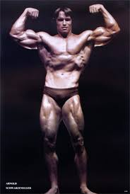 Arnold Bodybuilding Poster