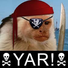 http://t2.gstatic.com/images?q=tbn:dKbOBfQnS1YE0M:http://i68.photobucket.com/albums/i19/evileric_photo/Pirate_Monkey.jpg&t=1